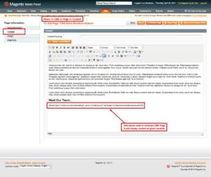 magento1 cms brochure set page content from admin panel