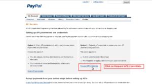 PayPayl_API_Signature_Step7