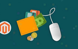 Wallet-as-Payment-Option-For-a-B2B-site-Magento-banner
